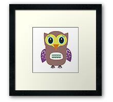 Coloured Owl  Framed Print