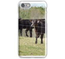 Nosy Bovines  iPhone Case/Skin