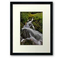Water fall with moss and trees Framed Print