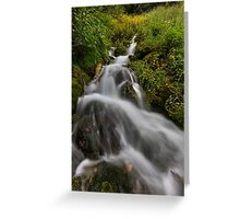 Water fall with moss and trees Greeting Card