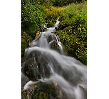 Water fall with moss and trees Photographic Print