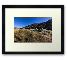Hills with grass sagebrush and sky Framed Print