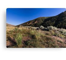 Hills with grass sagebrush and sky Canvas Print