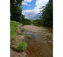 Kingfisher River Photographic Print