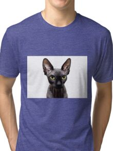 Beautiful sphynx cat with yellow eyes portrait on white background Tri-blend T-Shirt