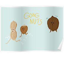 Going Nuts Poster