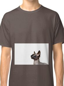 Beautiful sphynx cat with yellow eyes portrait on white background Classic T-Shirt