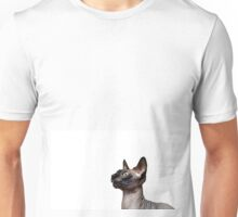 Beautiful sphynx cat with yellow eyes portrait on white background Unisex T-Shirt