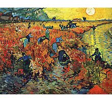 Red Vineyards by Vincent Van Gogh Photographic Print