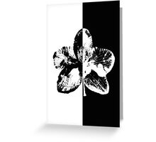 Orhid: black or white Greeting Card