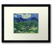 The Olive Trees by Vincent Van Gogh Framed Print