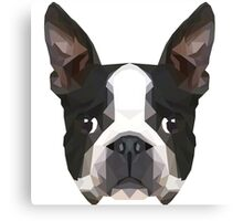 Crystalline Boston Terrier Canvas Print