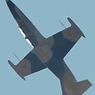Plane & Simple - Aero Albatross VH-LCJ by muz2142