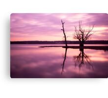 A Beautiful Pink Sunset Canvas Print