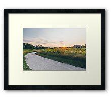 Sun Trail  Framed Print