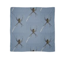 Orb Spider on a web Scarf