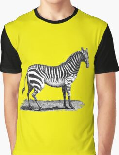 Zebra vintage illustration  Graphic T-Shirt