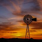 Sunset Windmill - Seligman, Arizona by Mary Warner