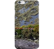 Rule of life iPhone Case/Skin