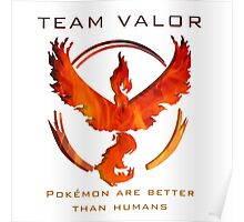 Pokemon GO! Team Valor Poster
