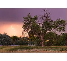 Thunderstorm In The Woods Photographic Print