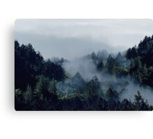End in fire Canvas Print