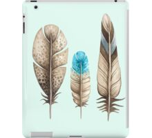 Watercolor Feathers mint green dos iPad Case/Skin