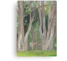 Vermont, shady trees Canvas Print