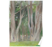 Vermont, shady trees Poster