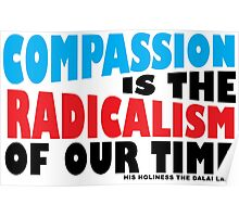 Compassion is the Radicalism of our Time Poster