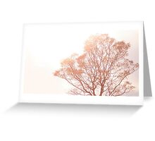light thru nature Greeting Card