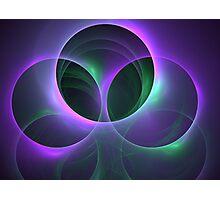 Plant Spheres Photographic Print
