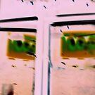 Window of opportunity by xenxen