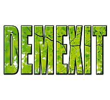 Demexit Photographic Print