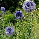 Blue Balls by bubblehex08