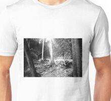 Morning  Rays............ Unisex T-Shirt