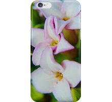 Delicate and Lovely iPhone Case/Skin