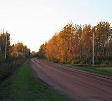 Prince Edward Island, Red Dirt Road, Canada by Linda Jackson