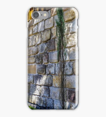 Old Stone Building iPhone Case/Skin