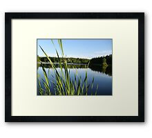 Home By the Pond Framed Print