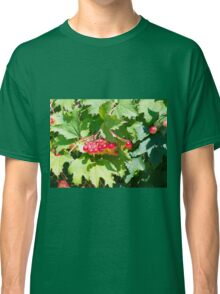 Leaves and unripe berries guelder viburnum opulus Classic T-Shirt