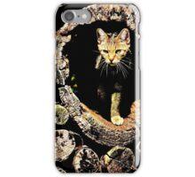 Mystery Cat iPhone Case/Skin