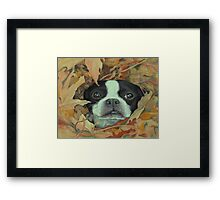 Boston in the Leaves Framed Print