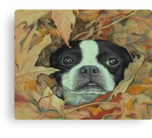 Boston in the Leaves Canvas Print