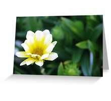 The Simplistic Beauty of Nature Greeting Card