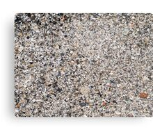 Surface of the beach from the wreckage of shells Metal Print