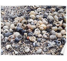 The surface of the sea coast with blur background Poster
