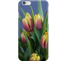 red and yellow tulips in spring blue background iPhone Case/Skin