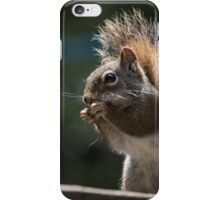red squirrel dark green background iPhone Case/Skin