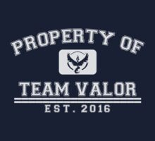 Pokemon Go - Property Of Team Valor Kids Tee